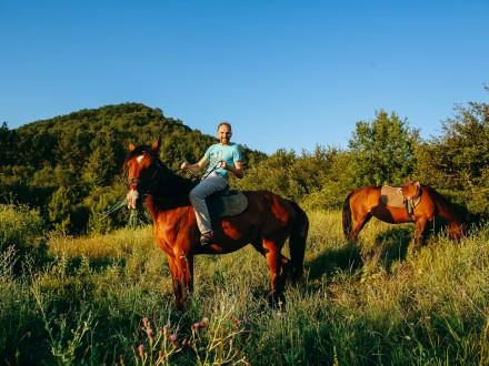 кони11